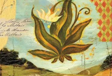 Pourquoi le livre des Quatre Accords toltèques de Don Miguel Ruiz est-il devenu un phénomène éditorial ?